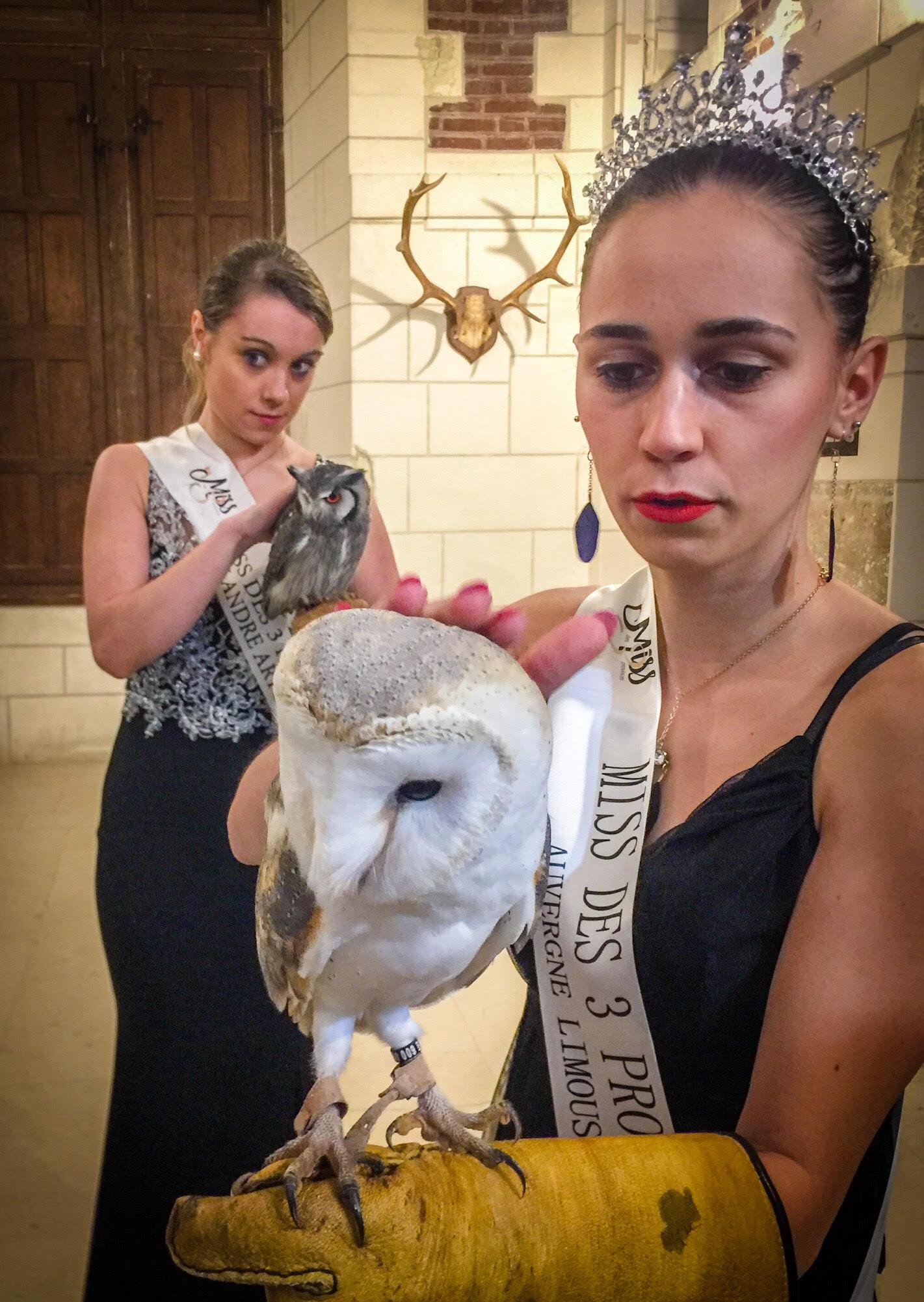 Miss de 3 provinces initiation à la fauconnerie